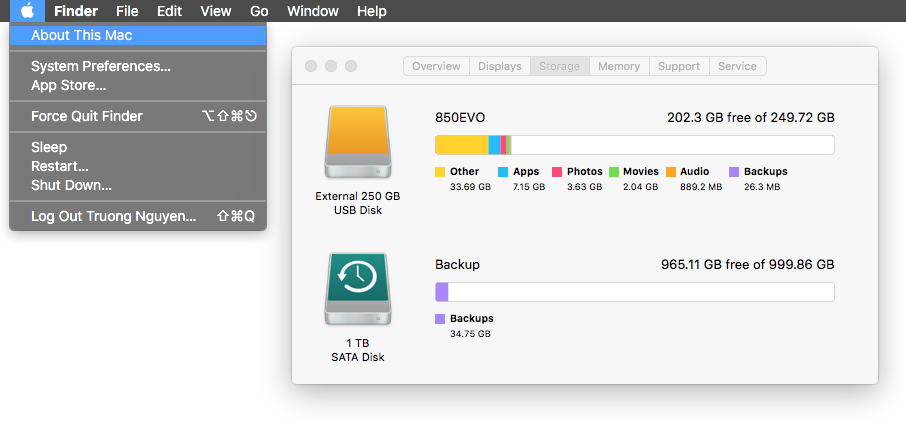 View disk space usage on a Mac