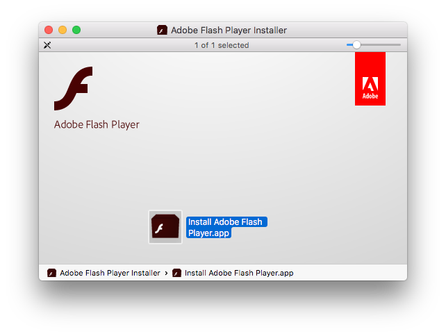 Mount AdobeFlashPlayer dmg then update Flash Player
