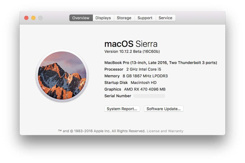 RX 470 Thunderbolt 3 eGPU showing in macOS System Info